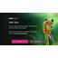 Tulevaisuus tulee: BBC testaa Ultra HD -videon jakelua netissä